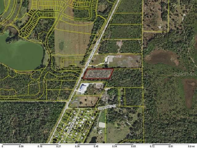 11480 SW County Road 769, Arcadia, FL 34269 (MLS #C7437600) :: Everlane Realty