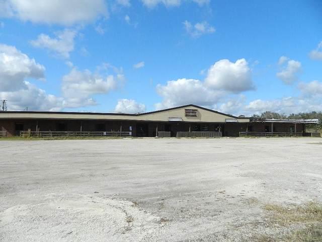 4135 SW Highway 17, Arcadia, FL 34266 (MLS #C7437704) :: The Kardosh Team