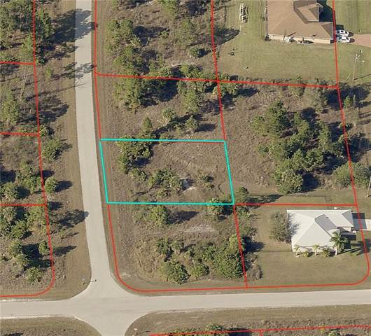 927 Countess Avenue, Lehigh Acres, FL 33974 (MLS #C7437831) :: Lockhart & Walseth Team, Realtors