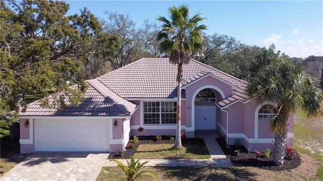 9423 Dibot Court, Hudson, FL 34667 (MLS #C7438351) :: Tuscawilla Realty, Inc