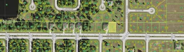 62 Harness Road, Placida, FL 33946 (MLS #C7438356) :: Young Real Estate