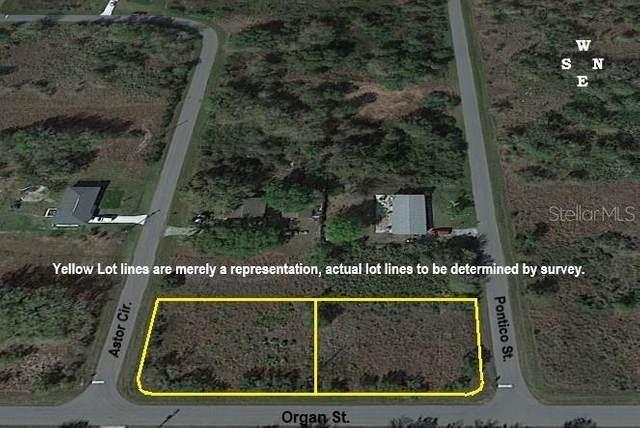 167 Astor Circle, Punta Gorda, FL 33982 (MLS #C7438491) :: BuySellLiveFlorida.com