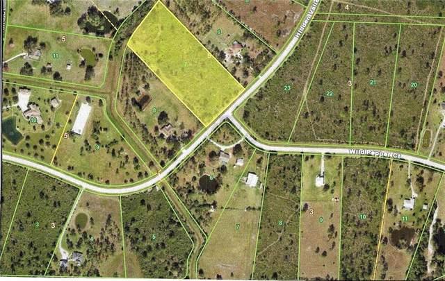 3450 Hidden Valley Circle, Punta Gorda, FL 33982 (MLS #C7438692) :: Lockhart & Walseth Team, Realtors