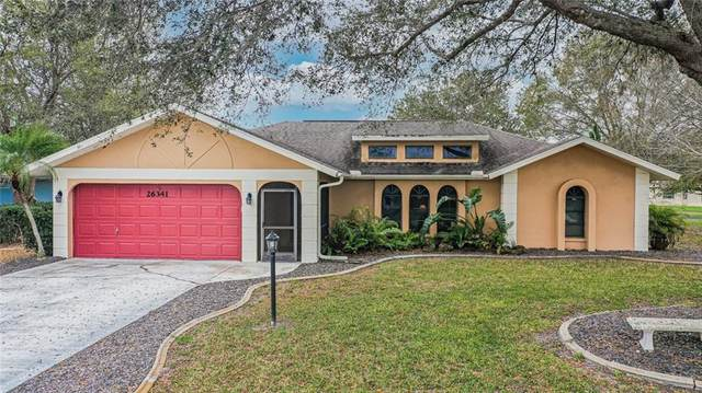 26341 Asuncion Drive, Port Charlotte, FL 33983 (MLS #C7438893) :: Visionary Properties Inc