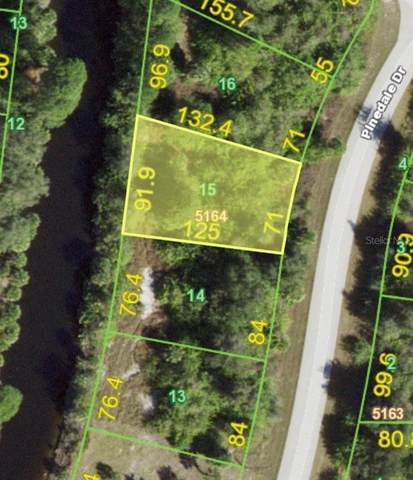 7741 Pinedale Drive, Port Charlotte, FL 33981 (MLS #C7438978) :: BuySellLiveFlorida.com