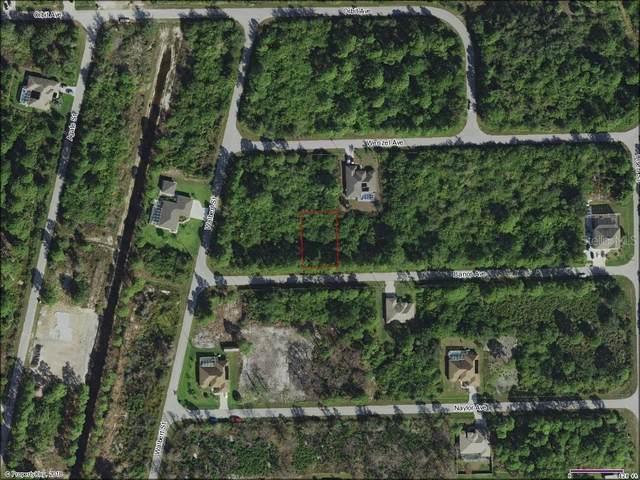 14008 Banos Avenue, Port Charlotte, FL 33981 (MLS #C7439258) :: Lockhart & Walseth Team, Realtors