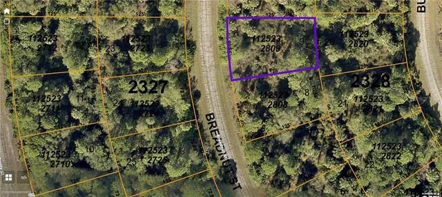 Breadnut Street, North Port, FL 34288 (MLS #C7439317) :: Pristine Properties