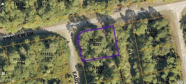 Farview Drive, North Port, FL 34288 (MLS #C7439321) :: Dalton Wade Real Estate Group