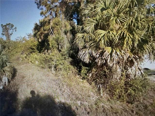 1125 Dorchester Street, Port Charlotte, FL 33952 (MLS #C7439354) :: Pepine Realty