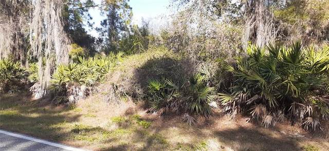 3132 Auburn Boulevard, Port Charlotte, FL 33948 (MLS #C7439371) :: Delgado Home Team at Keller Williams