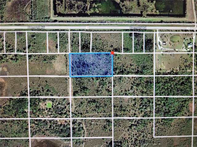 49573 Bermont Road, Punta Gorda, FL 33982 (MLS #C7439411) :: The Light Team