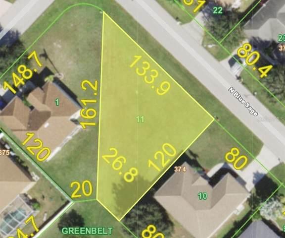 7209 N Blue Sage, Punta Gorda, FL 33955 (MLS #C7439450) :: Bob Paulson with Vylla Home