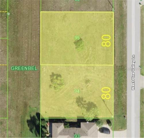 255 W Pine Valley Lane, Rotonda West, FL 33947 (MLS #C7439457) :: Positive Edge Real Estate