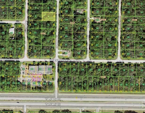 423 Camrose Street, Port Charlotte, FL 33954 (MLS #C7439479) :: The Heidi Schrock Team