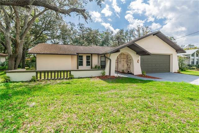 8050 Kimberly Avenue, Spring Hill, FL 34606 (MLS #C7439492) :: Realty One Group Skyline / The Rose Team