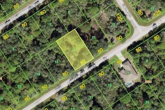 1433 Adalia Terrace, Port Charlotte, FL 33953 (MLS #C7439508) :: Bob Paulson with Vylla Home