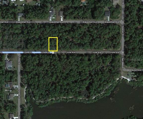 18126 York Avenue, Port Charlotte, FL 33948 (MLS #C7439652) :: The Light Team