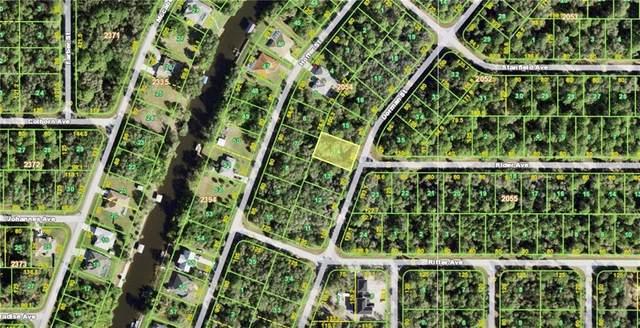 409 Dorman Street, Port Charlotte, FL 33953 (MLS #C7439676) :: Dalton Wade Real Estate Group