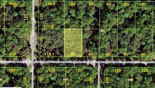 17402 Geddes Avenue, Port Charlotte, FL 33954 (MLS #C7439683) :: Dalton Wade Real Estate Group