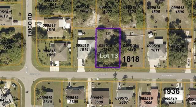 0 Chesebro Avenue, North Port, FL 34287 (MLS #C7439960) :: Premier Home Experts