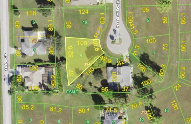 16073 Hesta Misty Court, Punta Gorda, FL 33955 (MLS #C7439983) :: Coldwell Banker Vanguard Realty
