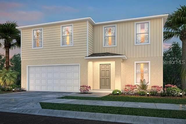 9779 N Langdon Road, Citrus Springs, FL 34434 (MLS #C7440776) :: The Kardosh Team