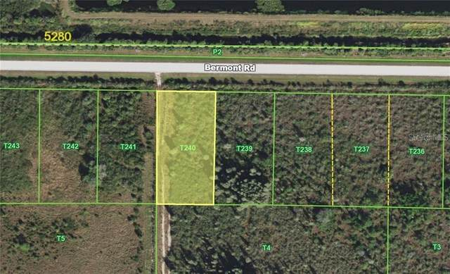 49521 Bermont Road, Punta Gorda, FL 33982 (MLS #C7440849) :: The Heidi Schrock Team