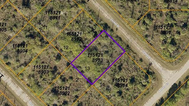 Cardon Street, North Port, FL 34288 (MLS #C7441152) :: The Kardosh Team