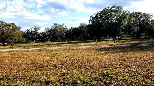 SW Koch Road, Arcadia, FL 34266 (MLS #C7441199) :: The Kardosh Team