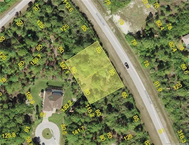 14523 San Domingo Boulevard, Port Charlotte, FL 33981 (MLS #C7441436) :: The Lersch Group