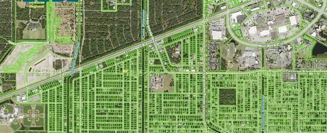 1996 Dorion Street, Port Charlotte, FL 33948 (MLS #C7441504) :: The Lersch Group