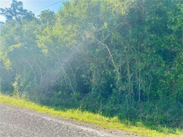 8115 SW Nancy Drive, Arcadia, FL 34269 (MLS #C7441524) :: Everlane Realty
