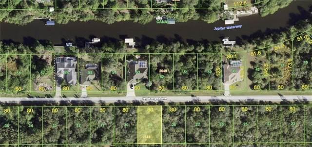 14057 Hydrangea Avenue, Port Charlotte, FL 33953 (MLS #C7441692) :: Charles Rutenberg Realty