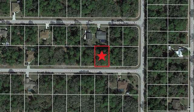 17154 Baker Avenue, Port Charlotte, FL 33948 (MLS #C7441756) :: Aybar Homes
