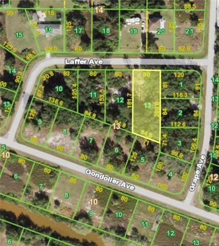 29219 Laffer Avenue, Punta Gorda, FL 33982 (MLS #C7441793) :: Vacasa Real Estate