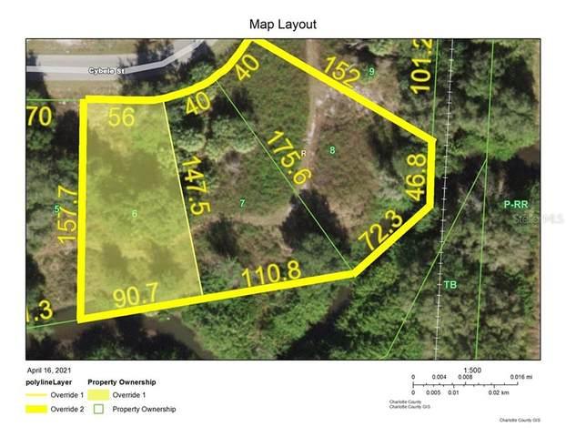 29231 Cybele Street, Punta Gorda, FL 33982 (MLS #C7441835) :: Premier Home Experts