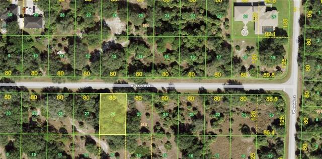 19159 Ruskin Avenue, Port Charlotte, FL 33954 (MLS #C7441837) :: Realty Executives in The Villages
