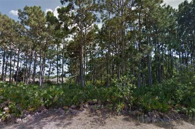 9081 Beaverhead Avenue, Englewood, FL 34224 (MLS #C7441886) :: Bustamante Real Estate