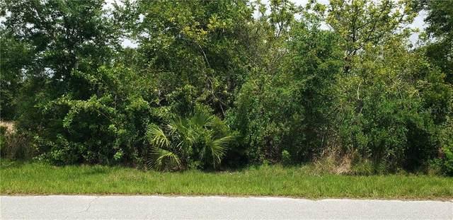 11098 Magdalena Avenue, Englewood, FL 34224 (MLS #C7441953) :: Bustamante Real Estate