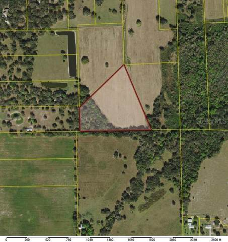 3351 SW Martin Lane, Arcadia, FL 34266 (MLS #C7441962) :: Vacasa Real Estate