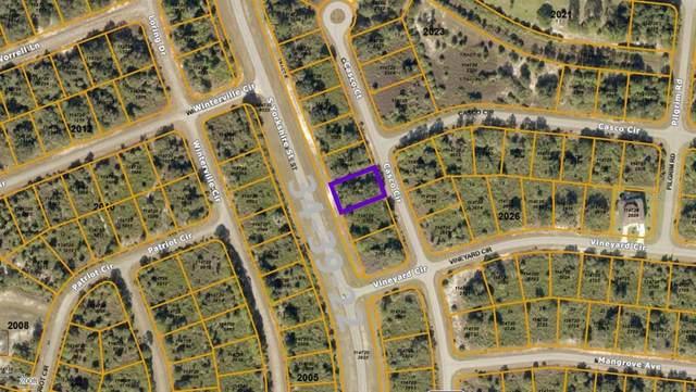 Casco Circle, North Port, FL 34288 (MLS #C7442015) :: Vacasa Real Estate