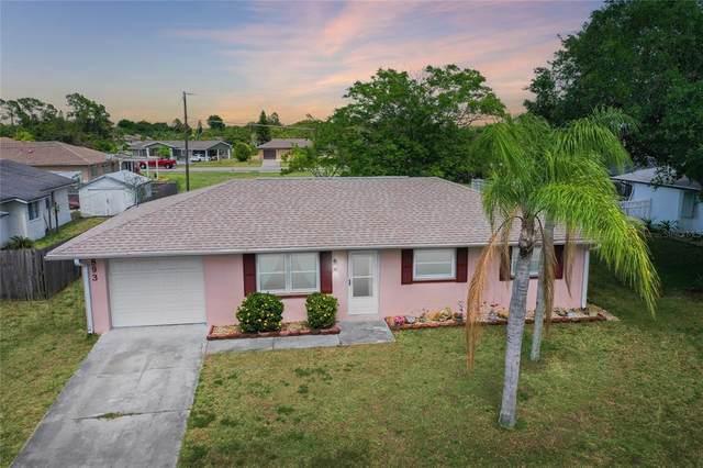 893 Riviera Lane NW, Port Charlotte, FL 33948 (MLS #C7442071) :: Premier Home Experts