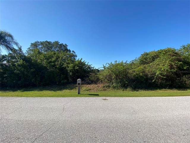 10447 Waterford Avenue, Englewood, FL 34224 (MLS #C7442076) :: The Hesse Team