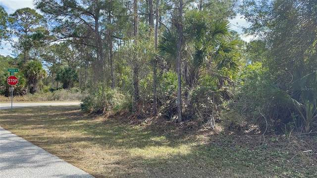 Tasco Drive, North Port, FL 34291 (MLS #C7442079) :: Your Florida House Team