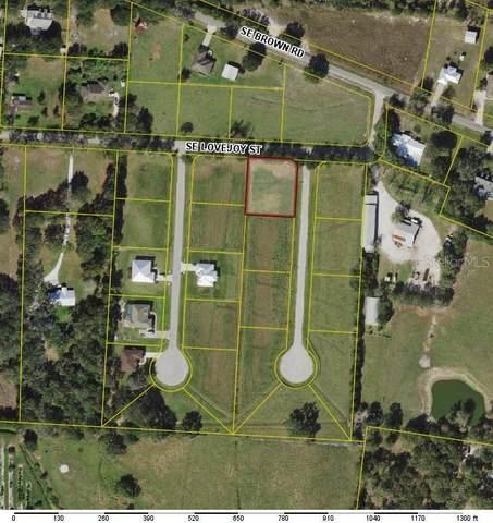 1601 SE Swingle Terrace, Arcadia, FL 34266 (MLS #C7442143) :: The Price Group