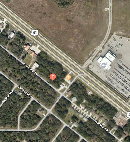 194 Lomond Drive, Port Charlotte, FL 33953 (MLS #C7442185) :: The Kardosh Team