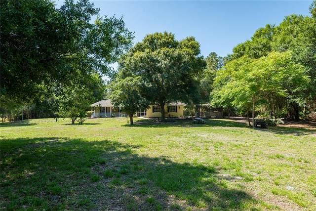 3455 Delor Avenue, North Port, FL 34286 (MLS #C7442304) :: The Robertson Real Estate Group