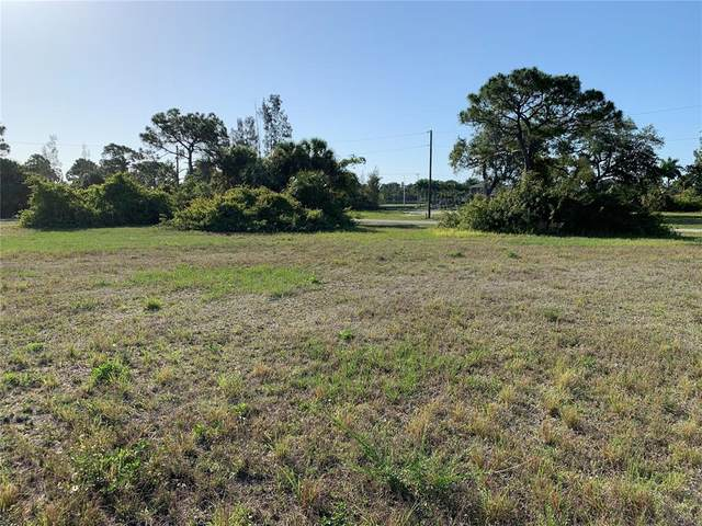 3221 NW 23RD Street, Cape Coral, FL 33993 (MLS #C7442366) :: Armel Real Estate