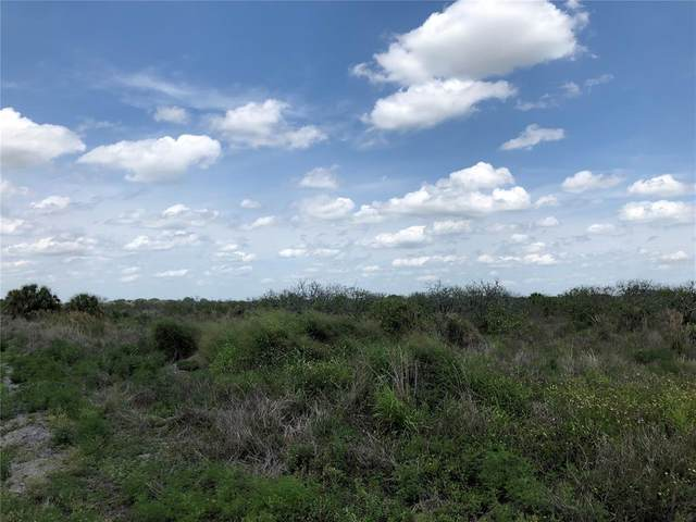 Graham Road, Punta Gorda, FL 33982 (MLS #C7442400) :: Visionary Properties Inc