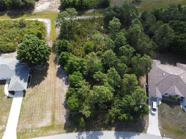 1102 Nomad Road, Punta Gorda, FL 33983 (MLS #C7442415) :: MVP Realty